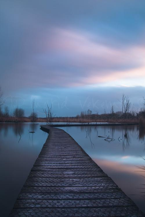 Morning clouds moving over swamp walkway