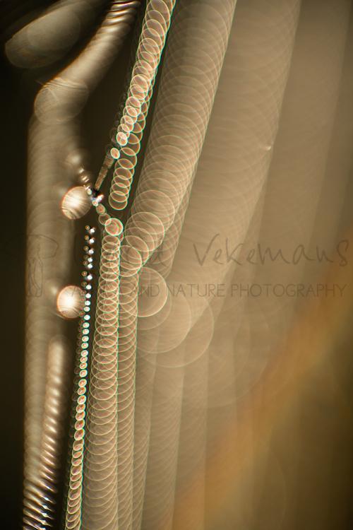 Regenboog in spinnenweb met dauw