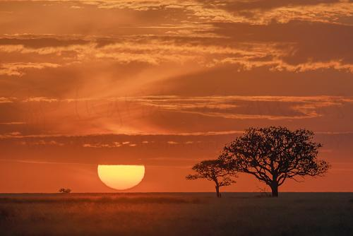 Sun rising over the Serengeti during Tanzania Wilderness photo safari