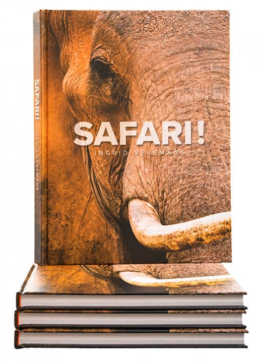Book Safari! - the essence by Ingrid Vekemans